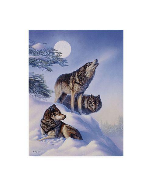 "Trademark Global Rusty Frentner 'Blue Serenade' Canvas Art - 14"" x 19"""