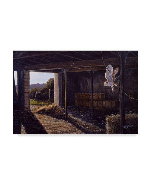 "Trademark Global Wilhelm Goebel 'On Silent Wings Barn Owl' Canvas Art - 12"" x 19"""