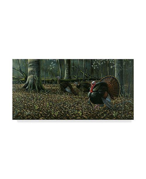 "Trademark Global Wilhelm Goebel 'The Suitor Wild Turkeys' Canvas Art - 10"" x 19"""