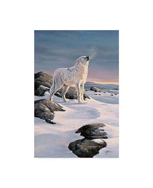 """Trademark Global Wilhelm Goebel 'Artic Song' Canvas Art - 12"""" x 19"""""""