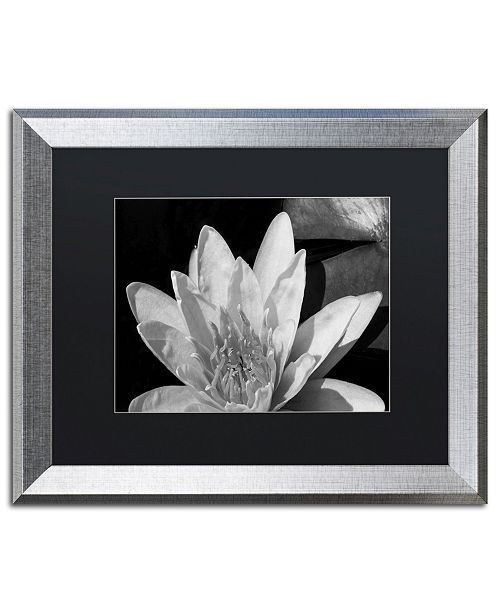 """Trademark Global Kurt Shaffer 'Water Lily in Black and White' Matted Framed Art - 16"""" x 20"""""""