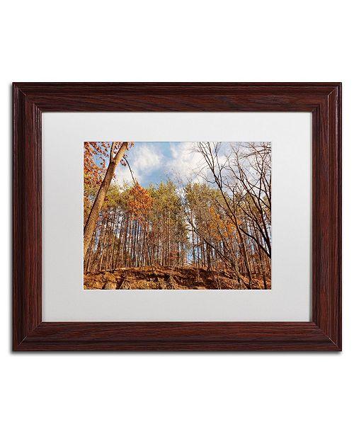 "Trademark Global Jason Shaffer 'Beaver Creek 8' Matted Framed Art - 14"" x 11"""