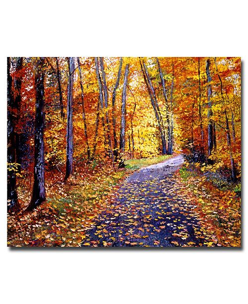 "Trademark Global David Lloyd Glover 'Leaf Covered Road' Canvas Art - 24"" x 18"""