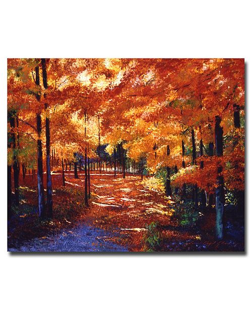 "Trademark Global David Lloyd Glover 'Magical Forest' Canvas Art - 47"" x 35"""