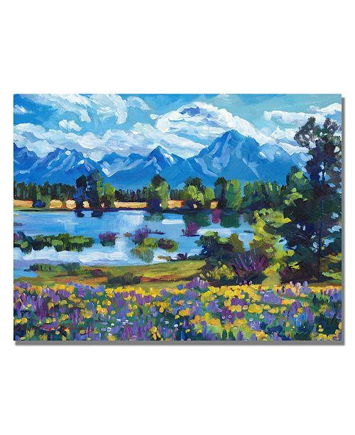 """Trademark Global David Lloyd Glover 'Wildflower Valley' Canvas Art - 24"""" x 18"""""""