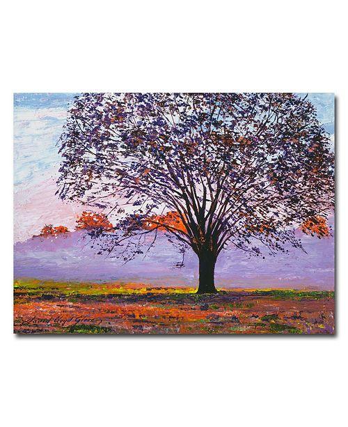 "Trademark Global David Lloyd Glover 'Majestic Tree in Morning Mist' Canvas Art - 32"" x 24"""