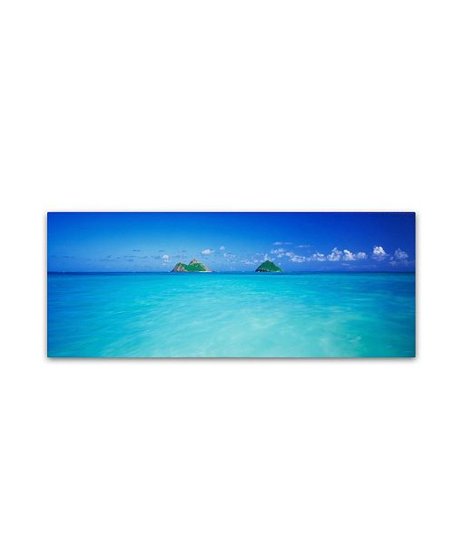 "Trademark Global David Evans 'Twin Islands-Oahu' Canvas Art - 24"" x 8"""