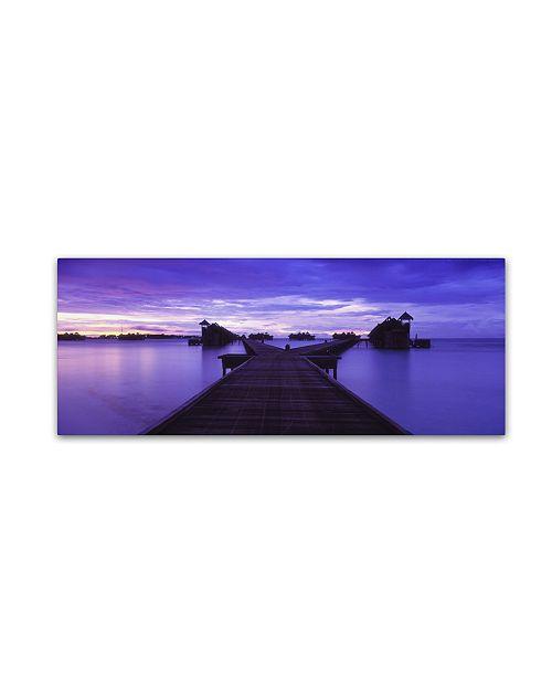 "Trademark Global David Evans 'Waterworld-Maldives' Canvas Art - 6"" x 19"""