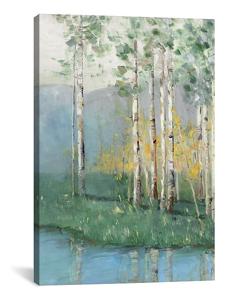 "iCanvas Birch Reflections Ii by Sally Swatland Gallery-Wrapped Canvas Print - 18"" x 12"" x 0.75"""