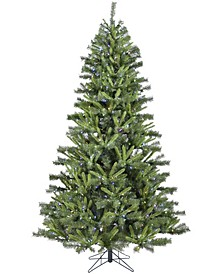 6.5'. Norway Pine Artificial Christmas Tree with Multi-Color LED String Lighting And Holiday Soundtrack