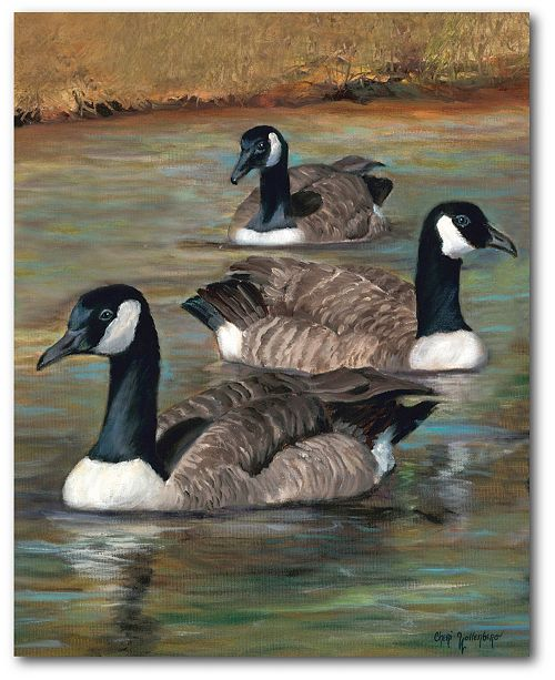 """Courtside Market Geese 16"""" x 20"""" Gallery-Wrapped Canvas Wall Art"""
