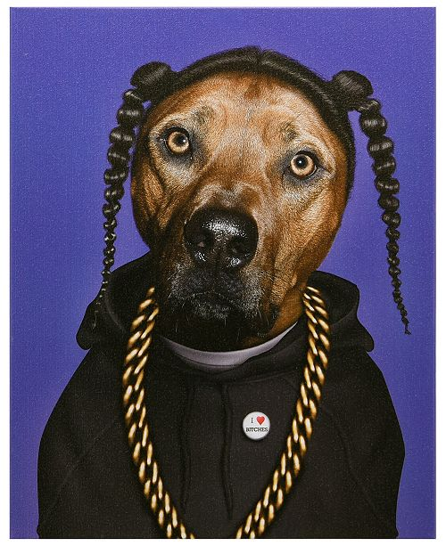 Empire Art Direct Pets Rock 'Rap' Graphic Art on Wrapped Canvas Wall Art - 20'' x 16''