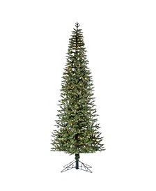 10-Foot High Pre-Lit Natural Cut Narrow Jackson Pine with Clear White Lights
