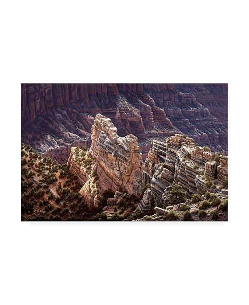 "Trademark Global R W Hedge Heavens Light Canvas Art - 19.5"" x 26"""