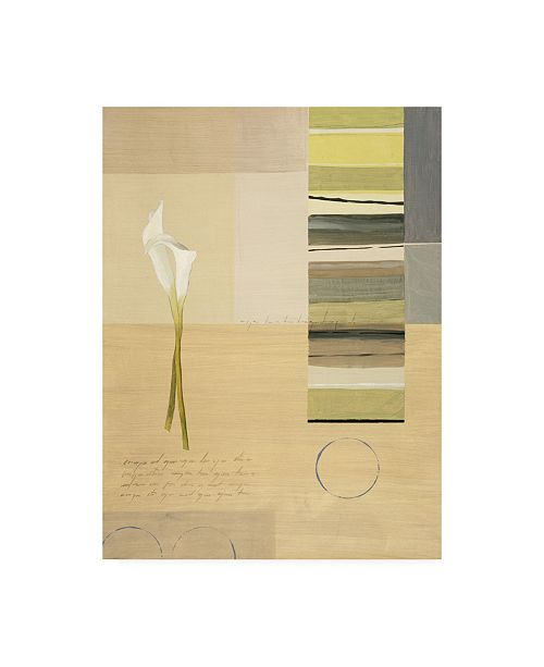 "Trademark Global Pablo Esteban White Calla Lilies with Stripes Canvas Art - 15.5"" x 21"""