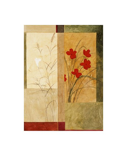 "Trademark Global Pablo Esteban Red and White Flowers on Sage Canvas Art - 27"" x 33.5"""