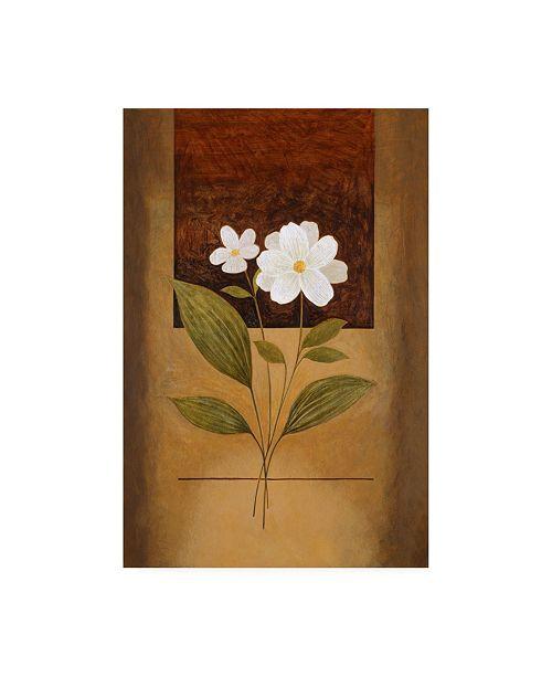 "Trademark Global Pablo Esteban Two White Flowers Canvas Art - 36.5"" x 48"""