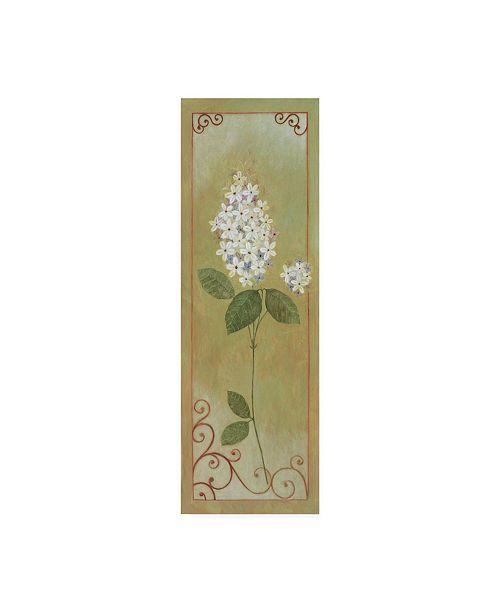 "Trademark Global Pablo Esteban White Lilac with Scroll Border Canvas Art - 19.5"" x 26"""