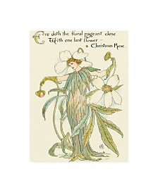"Walter Crane Shakespeares Garden XII (Christmas Rose) Canvas Art - 36.5"" x 48"""