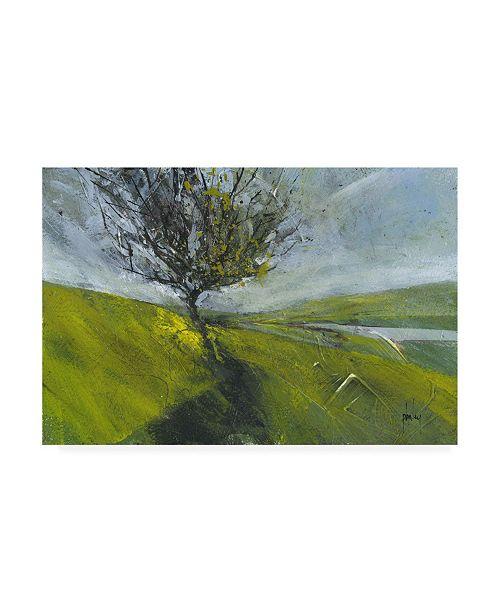 """Trademark Global Paul Baile Cambrian Hawthorne Canvas Art - 27"""" x 33.5"""""""