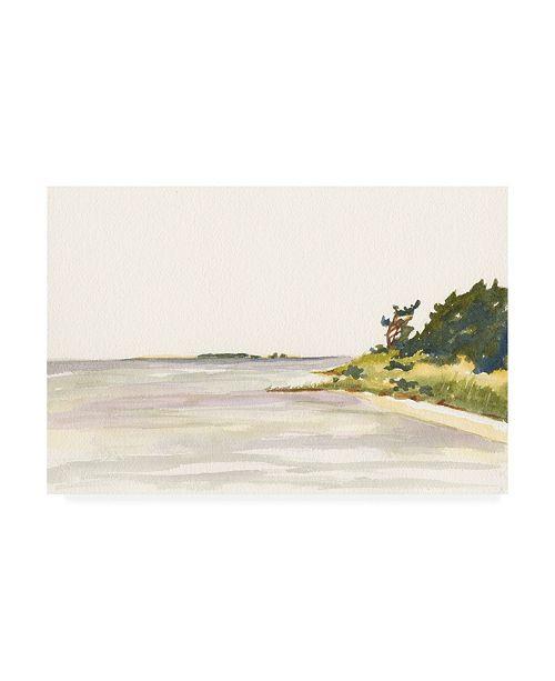 "Trademark Global Dianne Miller Solitary Coastline I Canvas Art - 20"" x 25"""