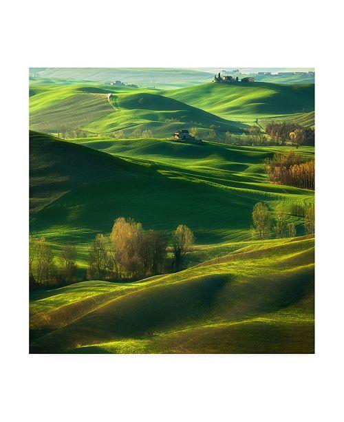 """Trademark Global Krzysztof Browko Valley Fog Canvas Art - 20"""" x 25"""""""