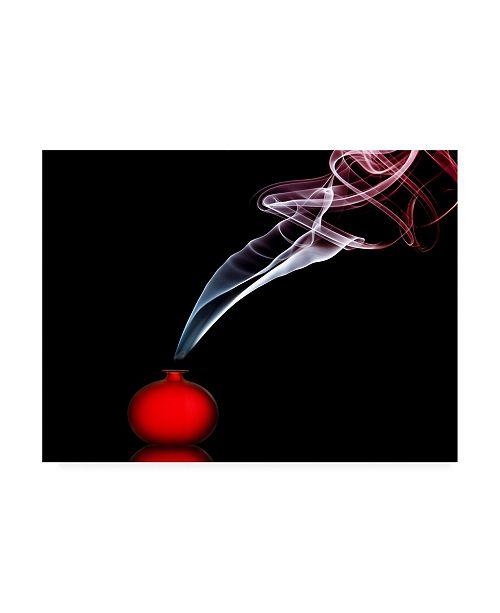 "Trademark Global Renee Doyle Smokin in Red Canvas Art - 20"" x 25"""