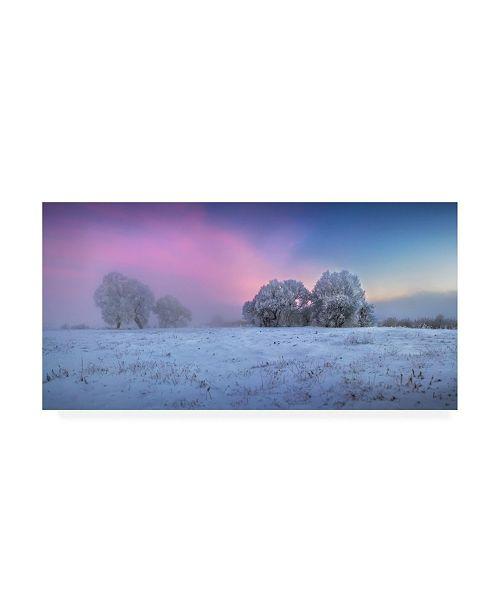 "Trademark Global Sergei Shabunevich Trees Covered in Snow Canvas Art - 20"" x 25"""