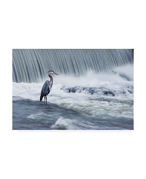 "Trademark Global Mircea Costina Solitude in Stormy Waters Canvas Art - 37"" x 49"""