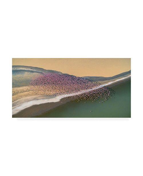 "Trademark Global John Fan Gone with the Wind Flamingo Canvas Art - 15"" x 20"""