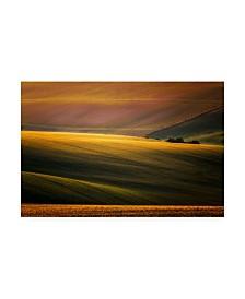 """Marek Boguszak Sunset Palette Canvas Art - 37"""" x 49"""""""
