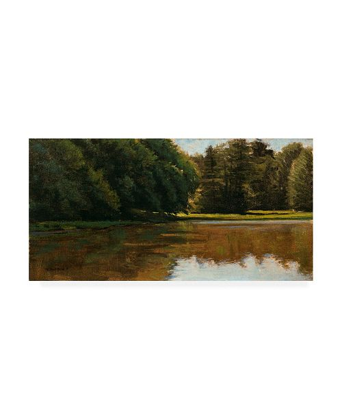 "Trademark Global Michael Budden Summer Light White Pine Rd Pond Canvas Art - 37"" x 49"""