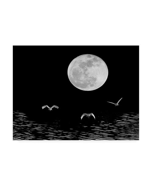 "Trademark Global Monte Nagler Moon Flight Delray Beach Florida Canvas Art - 20"" x 25"""