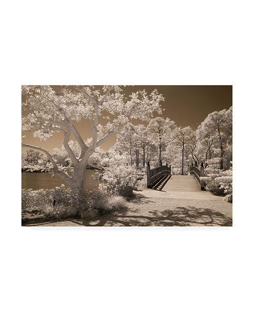 "Trademark Global Monte Nagler Bridge and Trees at Japanese Gardens Delray Beach Florida Canvas Art - 20"" x 25"""