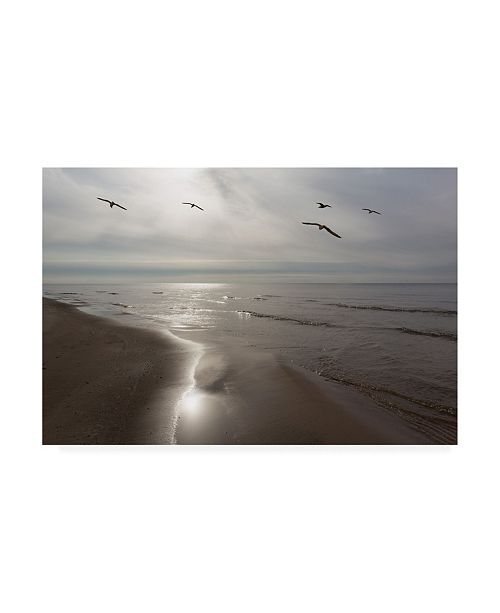 "Trademark Global Monte Nagler Five Birds Grand Haven Michigan Color Canvas Art - 20"" x 25"""