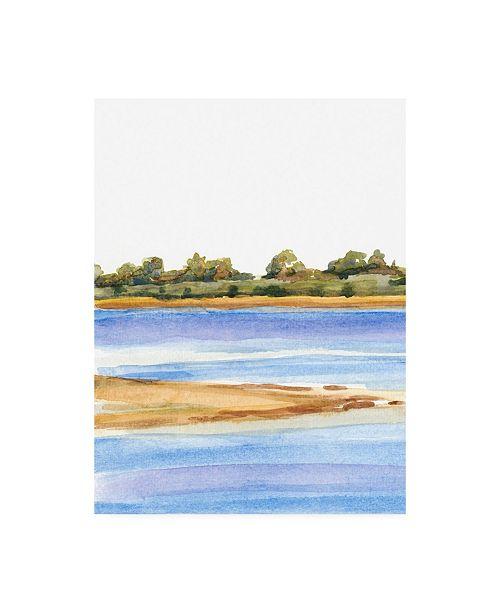"Trademark Global Dianne Miller The Sound III Canvas Art - 37"" x 49"""