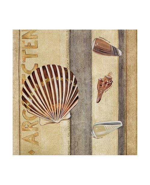 "Trademark Global Pablo Esteban Shells Over Panels 2 Canvas Art - 15.5"" x 21"""