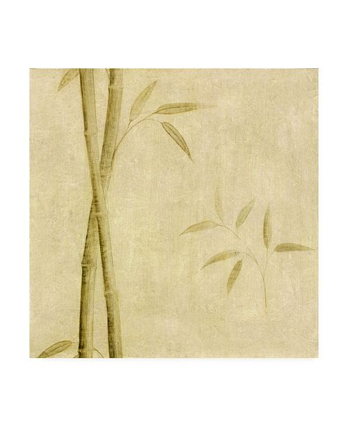 "Trademark Global Pablo Esteban Bamboo Beige Texture 1 Canvas Art - 19.5"" x 26"""