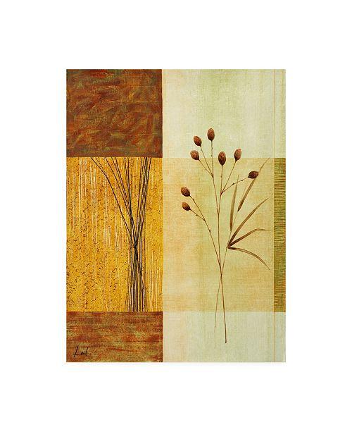 "Trademark Global Pablo Esteban Floral Illustration Over Beige Geometry 2 Canvas Art - 19.5"" x 26"""