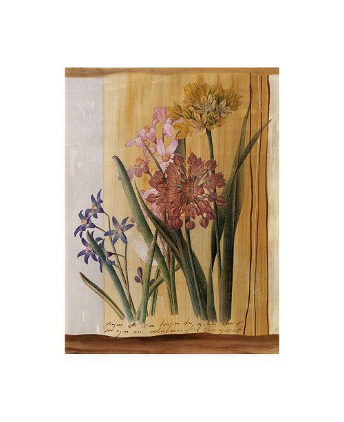 "Trademark Global Pablo Esteban Pink Flowers Distress 2 Canvas Art - 19.5"" x 26"""