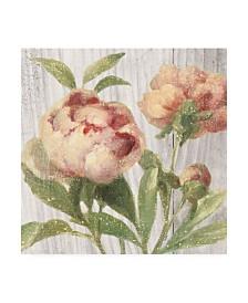 "Danhui Nai Scented Cottage Florals I Canvas Art - 15.5"" x 21"""