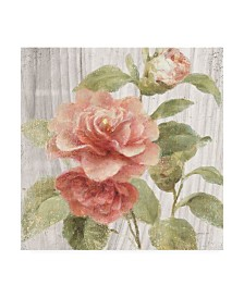 "Danhui Nai Scented Cottage Florals III Canvas Art - 36.5"" x 48"""
