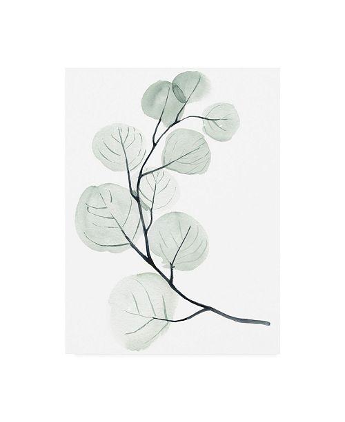 "Trademark Global Jennifer Paxton Parker Silver Dollars I Canvas Art - 15.5"" x 21"""