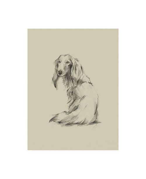 "Trademark Global Ethan Harper Puppy Dog Eyes II Canvas Art - 15.5"" x 21"""