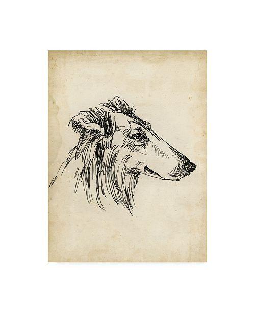 "Trademark Global Ethan Harper Breed Studies XII Canvas Art - 27"" x 33.5"""