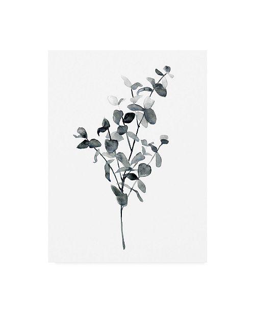 "Trademark Global Emma Scarvey Floral Canvas Art - 15.5"" x 21"""