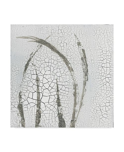 "Trademark Global Elena Ray Minimalism III Canvas Art - 20"" x 25"""