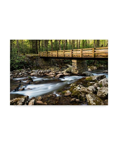 "Trademark Global Danny Head Bridge and Cascade I Canvas Art - 20"" x 25"""