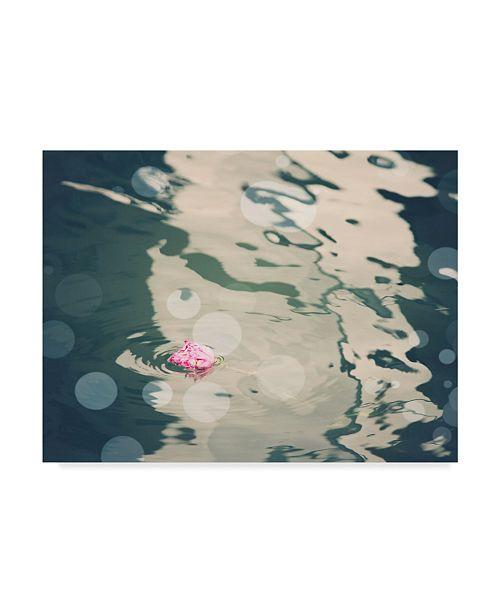 "Trademark Global Sylvia Coomes Venice Bokeh XIII Canvas Art - 20"" x 25"""