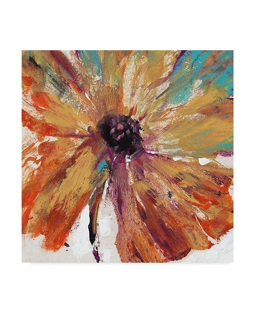 "Trademark Global Tim Otoole Orange Splash I Canvas Art - 15"" x 20"""